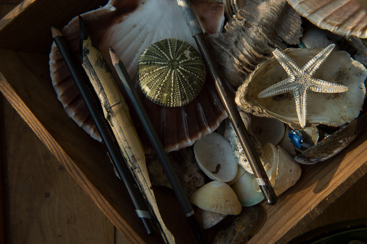 Shells, pencils, a star fish in a wooden trug