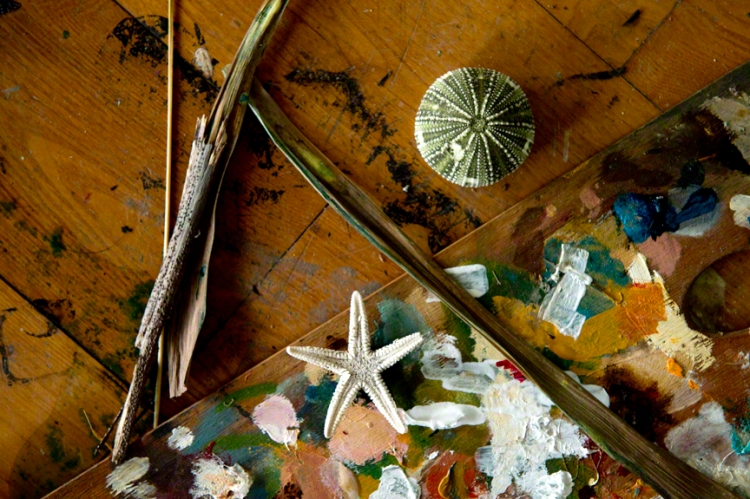 sticks, paint palet with dabs of oil paint, a star fish, Asteroidea, a sea urchin shell, lying on wooden floor boards in Catherine Forshall's studio